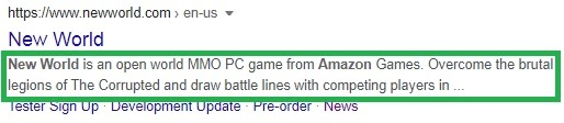 New World home page in SERPs with circled meta description